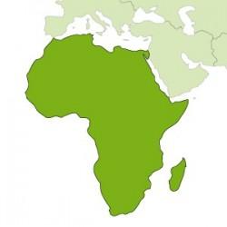 Bandiere Africa
